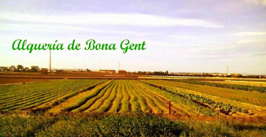 ALQUERIA BONA GENT